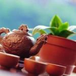 Чай Пуэр, эффект и отзывы