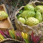 Соки Моринды лимоннолистной (Нони) из Тайланда, инструкция, отзывы