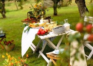 стол на пикник